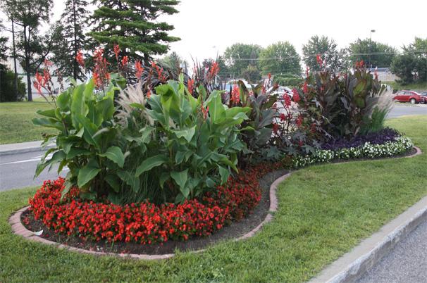 aménagement floral