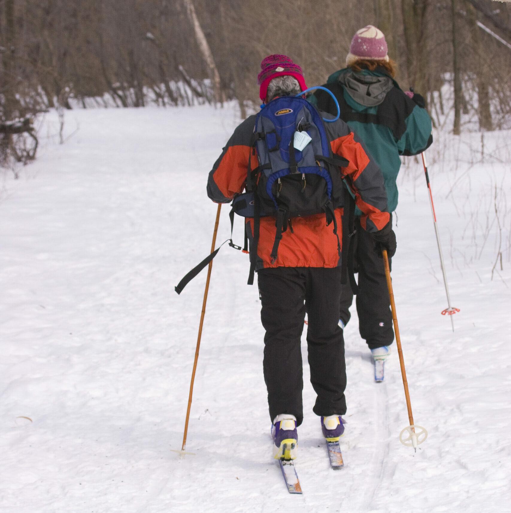 Deux personnes pratiquant le ski de fond